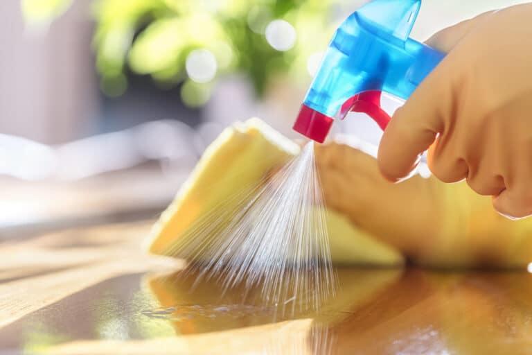 impresa di pulizie a verona